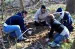 Volunteers plant Virginia bluebells at Pony Pasture near the River Trail