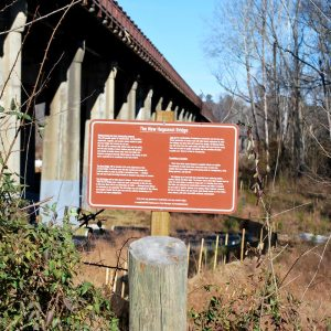 James River Park System has a sign just east of the bridge that may answer many questions about the Huguenot Bridge.